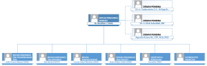 Struktur Organisasi IKA THP